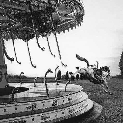 jumping-off-the-merry-go-round
