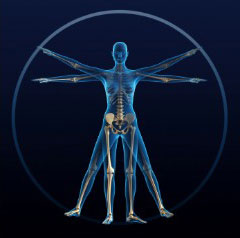 medical-intuitive-mini-body-scan_240x238